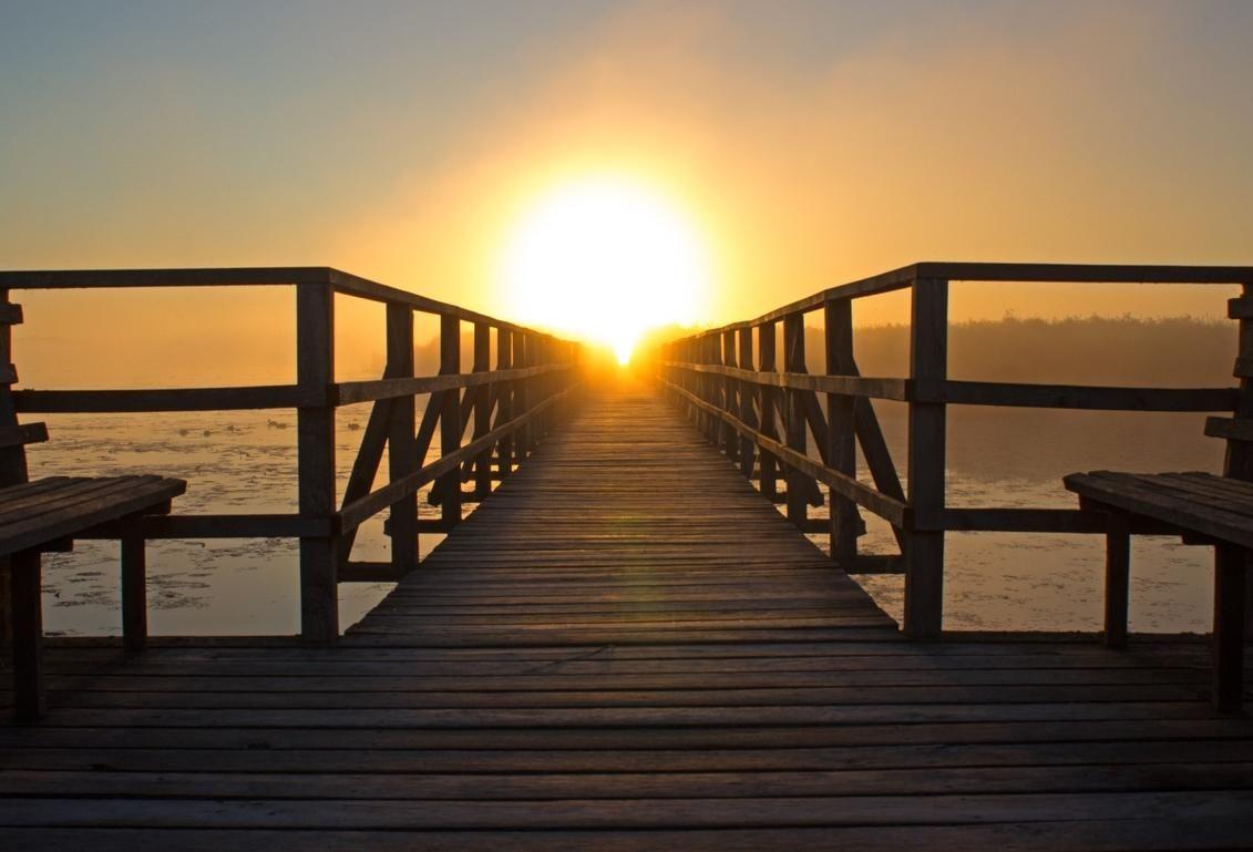 606c252eb2799 landscape nature light boardwalk wood sun 549959 pxhere com jpeg&width=1200&sign=Z5MCL6 6ASX4UhPAmiXV UnEOBhFHin20vI4VDwusE8.