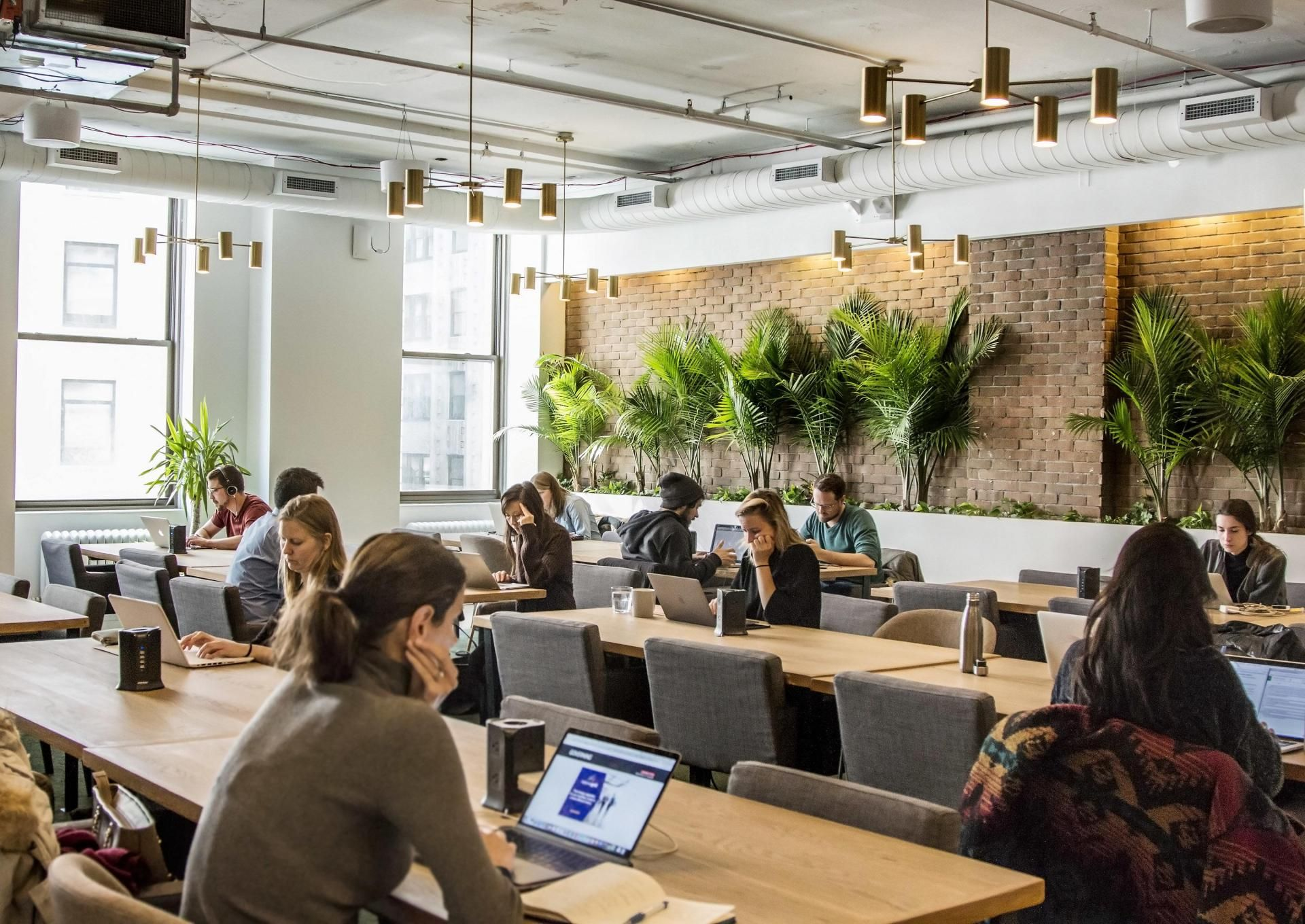 Coworking Firms Are Figuring Out How To Make It To Greener Pastures