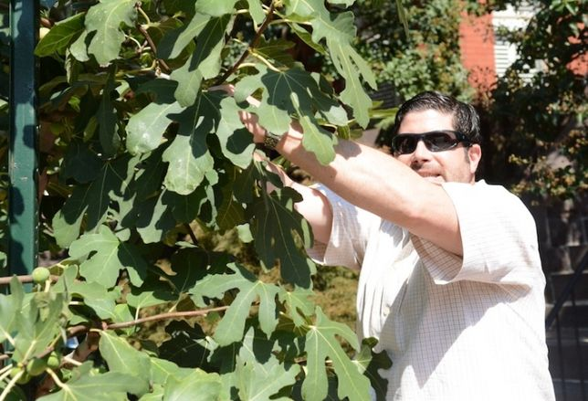 Urban Foraging with Chef Todd Wiss