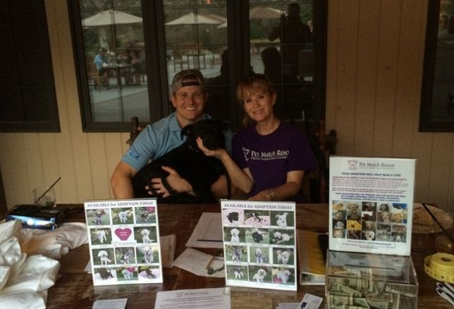 Mission Capital Helps Save Dogs