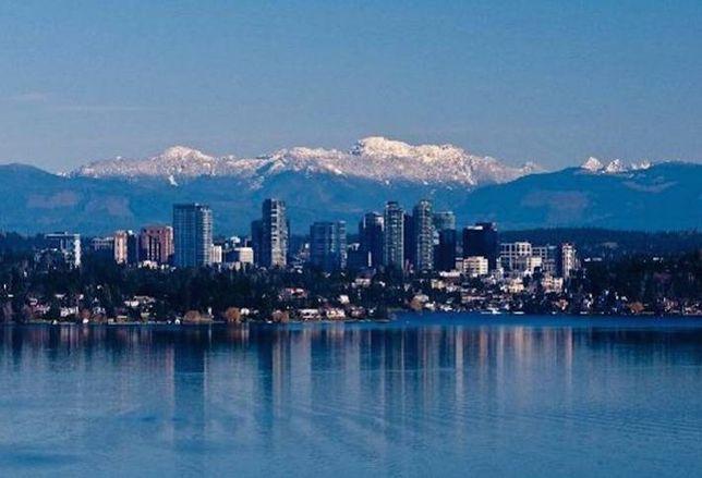 What Bellevue Can Teach DC
