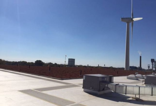 The green rooftop at Testa Produce, Chicago
