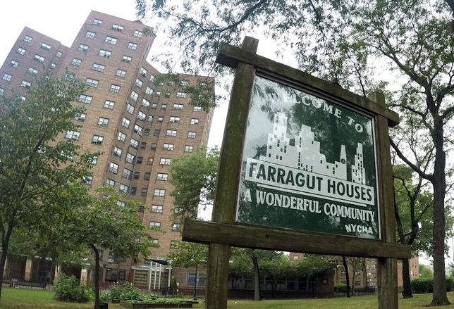 Farragut Houses, Brooklyn