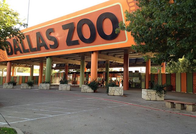 A New Deck Park Will Connect Oak Cliff To Zoo