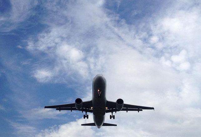 Plane, Cargo jet