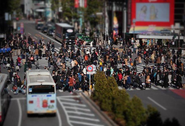 Crossing The Street