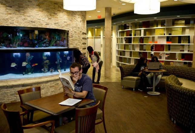 Saint Leo, Florida is about 30 miles from the beach, but students in Apartment 5 at Saint Leo University can make do with the 2,100 gallon saltwater aquarium in the common room of the on-campus community. Televisions for gaming, pool tables, an arcade and a relaxation room with napping pods give students a little balance in their study routines.