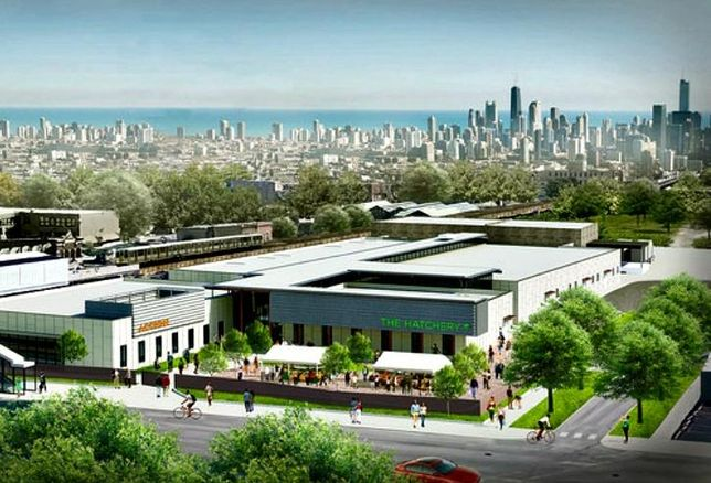 A rendering of The Hatchery, a food incubator in East Garfield Park.