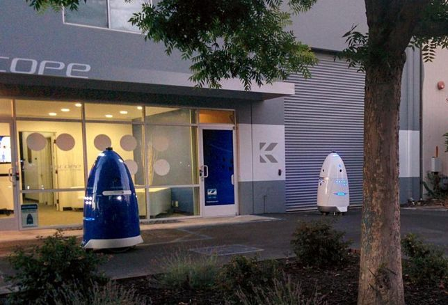 Security Robot's Firing Creates Questions About Tech In Public Spaces