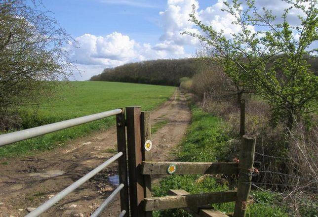 English countryside green belt