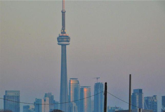 Toronto Skyline Avison Young GTA CN Tower