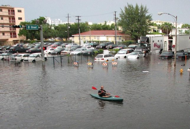 Miami Streets Could Flood Every Day By 2070, But Businesses Will Adjust, Local Experts Say