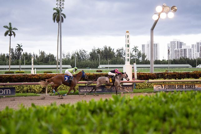 Challenges For Gulfstream Park: Retail Closings, Family Feud, Horse Deaths