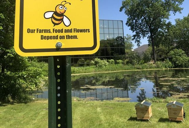 Honeybees Sign and Hives