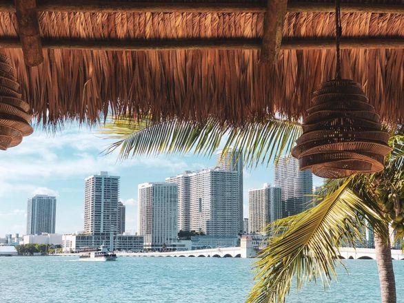 Infamous Miami Nightlife Impresario Chris Paciello Is Helping The Resurgence Of Watson Island