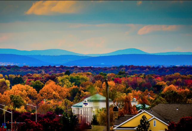 Fairfax Fall