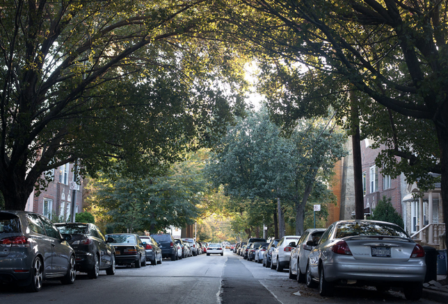 Besen Is Bullish On This N.O.I. — That's Neighborhood Of Interest Astoria, Queens