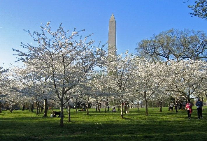 15. Washington, DC