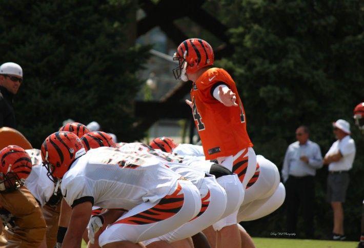 7. Cincinnati Bengals