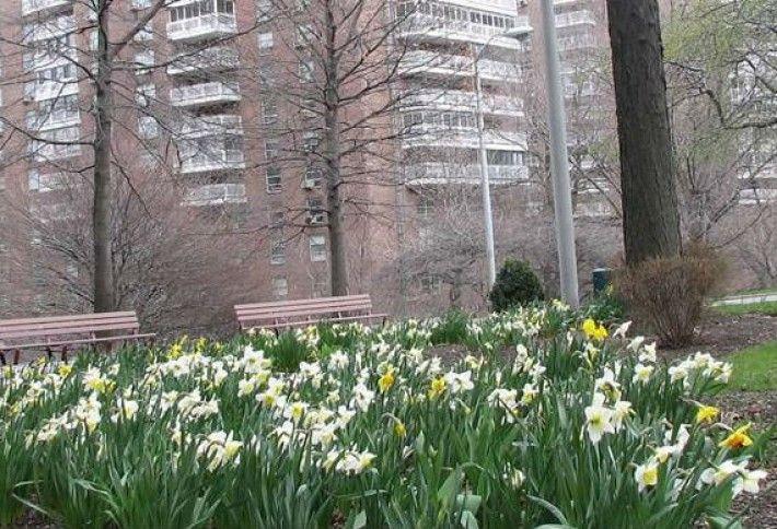 10. Morningside Gardens
