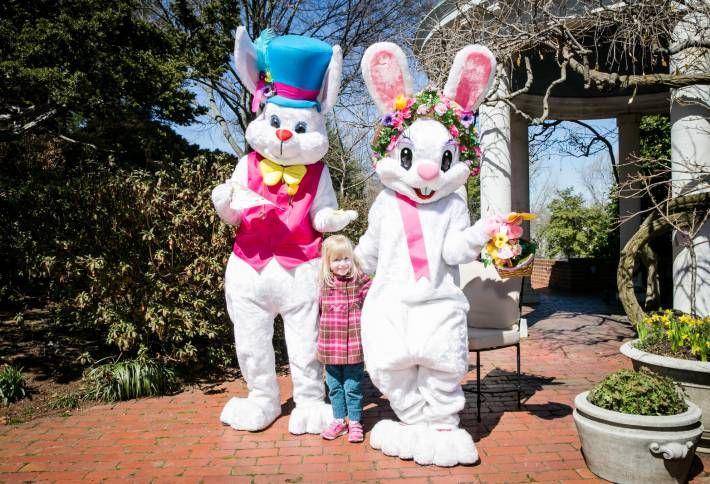S&R Foundation Easter Egg Hunt!