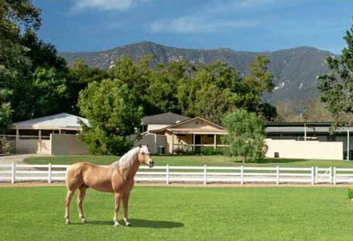 Oprah Seamair Farm