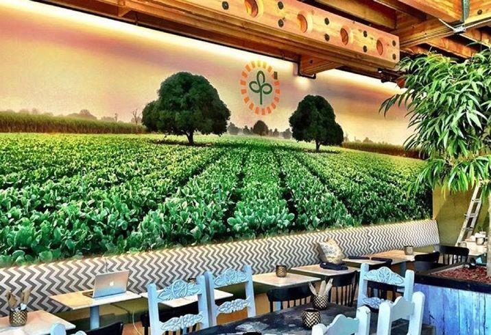 Riot Hospitality's Farm & Craft Revolutionizes Dining