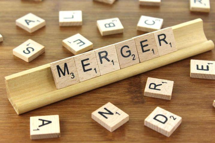 Merger, Joint Venture, Acquisition