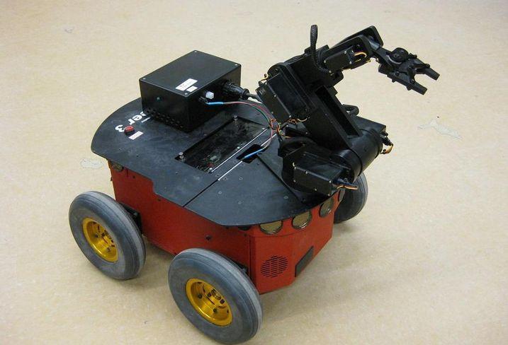 Autonomus robot