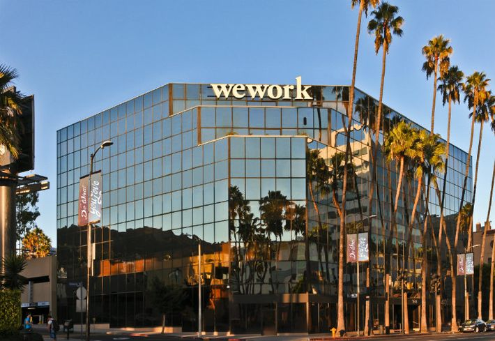 WeWork LA Office