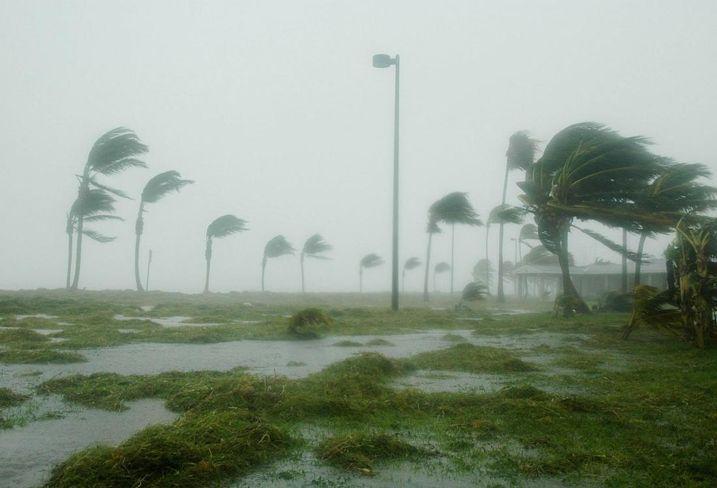 Hurricane, flooding winds