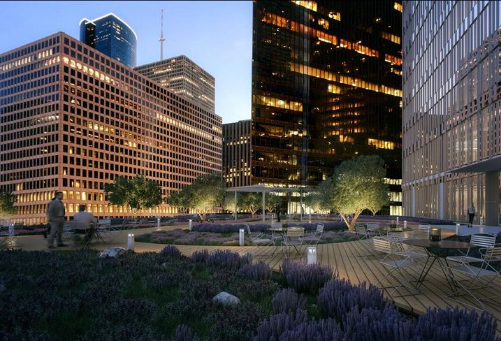 Capitol Tower Green Roof