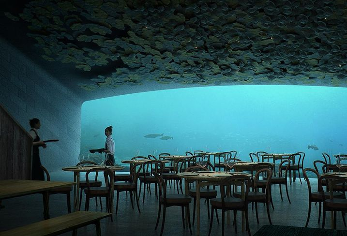 Want To Eat A Meal Under The Sea? Here's Your Chance