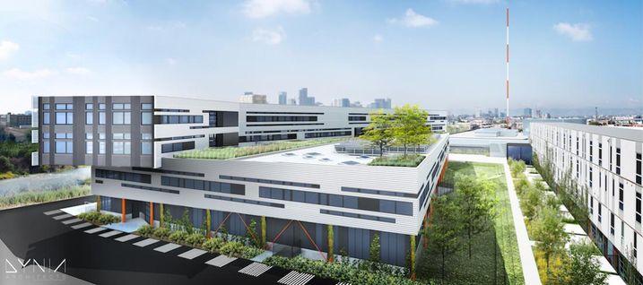 Zeppelin Development is installing a green roof on its Flight building