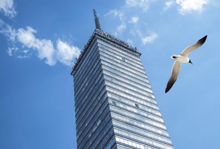 Boston's Growing Skyline Is A Bird Deathtrap