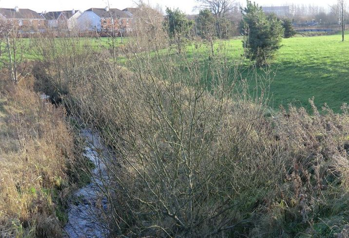 The Kilmahuddrick Stream tributary of the Griffeen River meanders through the southeastern part of the Griffeen Valley Park as it heads for its confluence. It has come past Grand Canal and western railway line, from the Kilmahuddrick and Clonburris areas Dublin new town