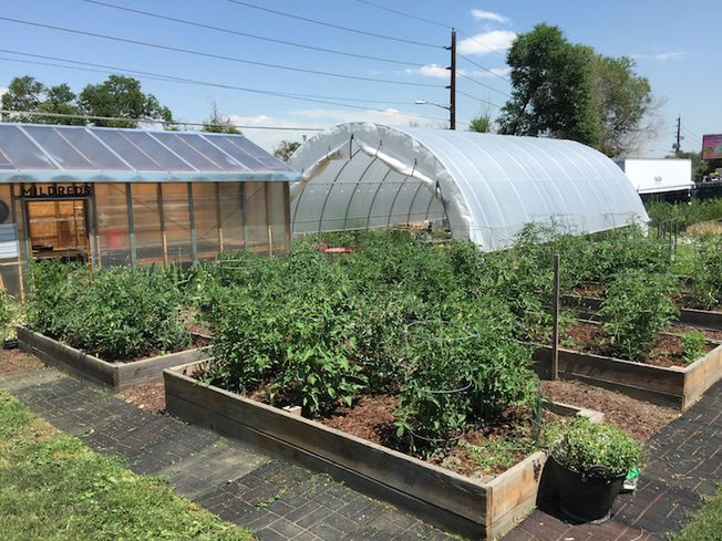 Way To Grow: Urban Farms Are An Amenity At Many Developments