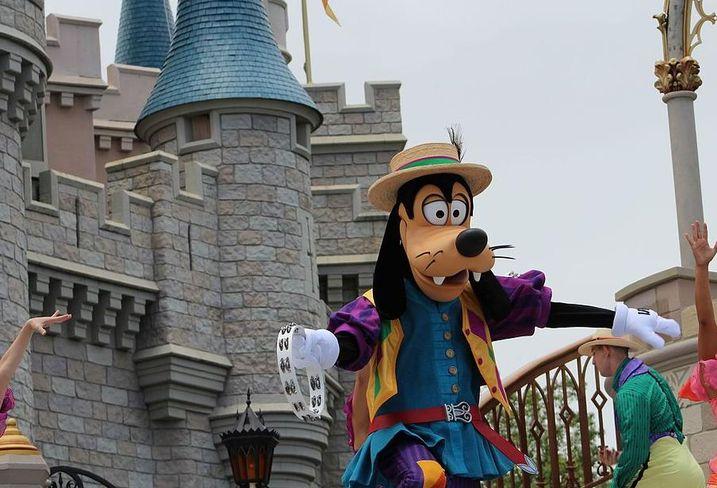 Theme park disney