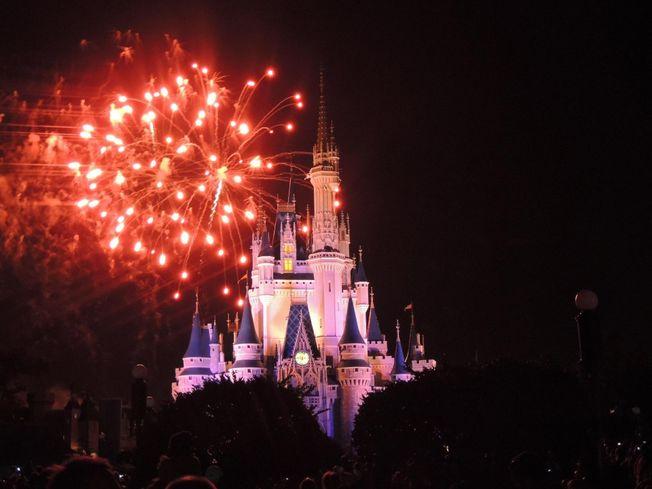 Disney's Big Recent Land Buys Trigger Speculation
