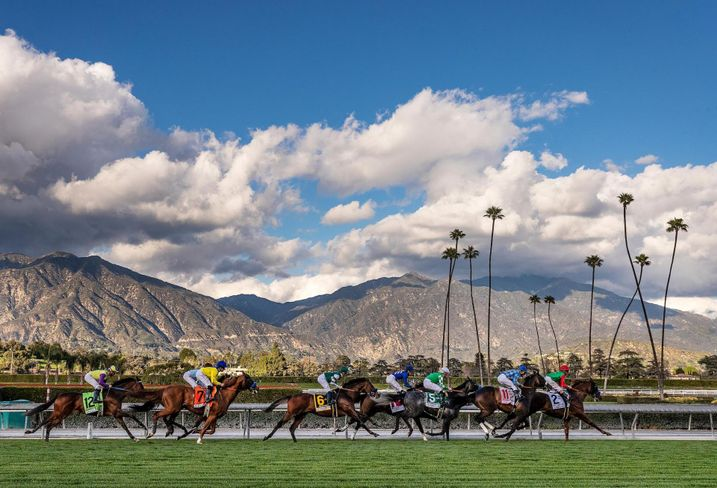Horses compete during a race at Santa Anita Park in Arcadia