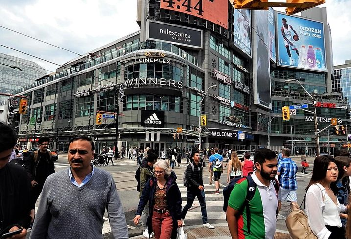 Toronto immigration numbers