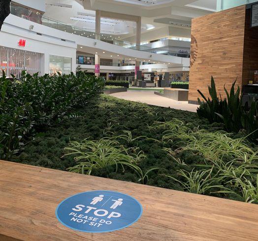 Eastridge Center COVID Reopening