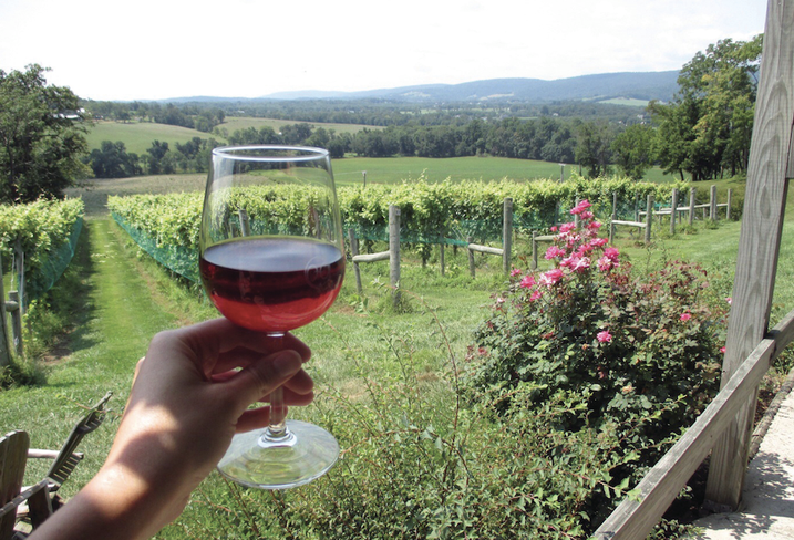 Loudoun County Wineries Gain Recognition, Fuel Tourism