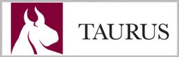 Taurus Investment Holdings